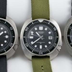 My Seikos group shot